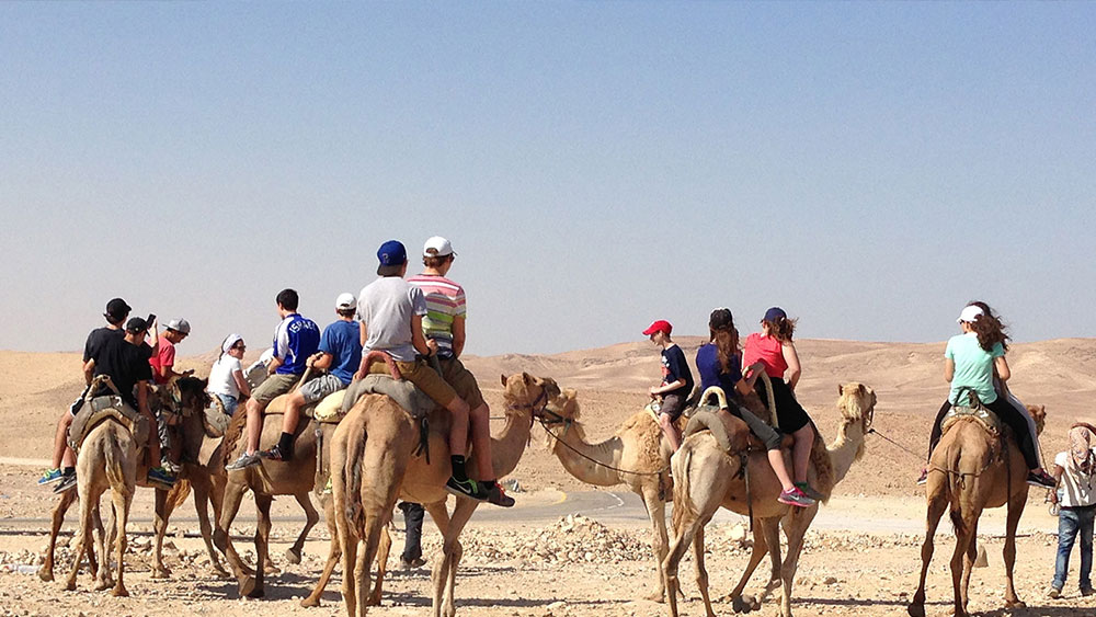 Special Tours & Desert Experience 9 Days/ 8 Nights